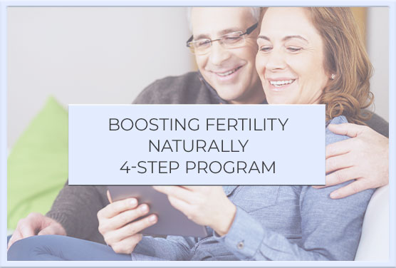 About holistic fertility onilne program